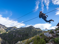 Cape Canopy Tour - Zip Line