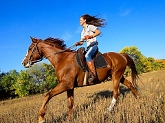 Adventure Zone Cullinan - Horse Riding