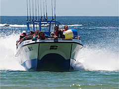 Plettenberg Bay Fishing Charters