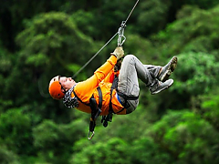 SA Forest Adventures - Hermanus Zipline