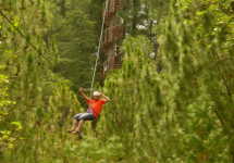 All Out Adventures - Zip Line