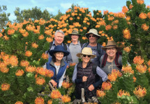 The Fynbos Trail - Guided Hiking