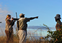 Great Limpopo Wilderness Camps & Trails