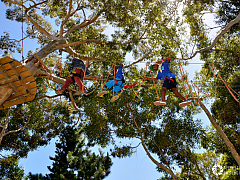 Acrobranch Adventure Park Cape Town