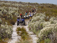 Tri Active Events Management - Quad Biking