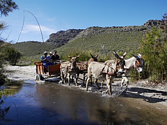 Cederberg Heritage Route - Slackpacking