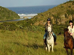 6 Night Wild Coast Horse Trail