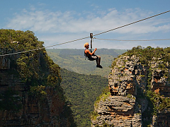 Wild Five Adventures - Zip Line