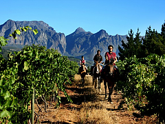 Fynbos Horse Trails