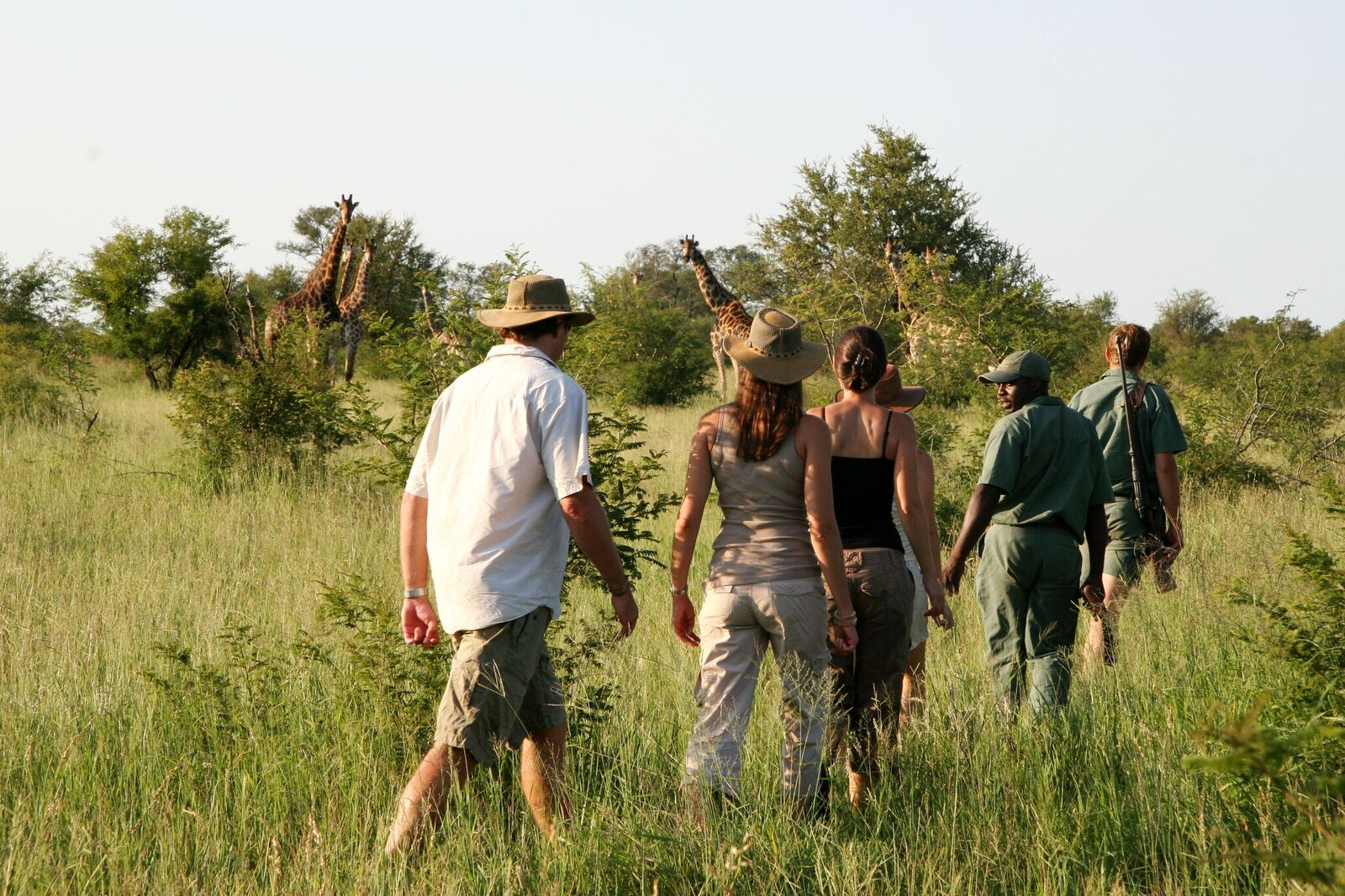 Rhino Walking Safaris