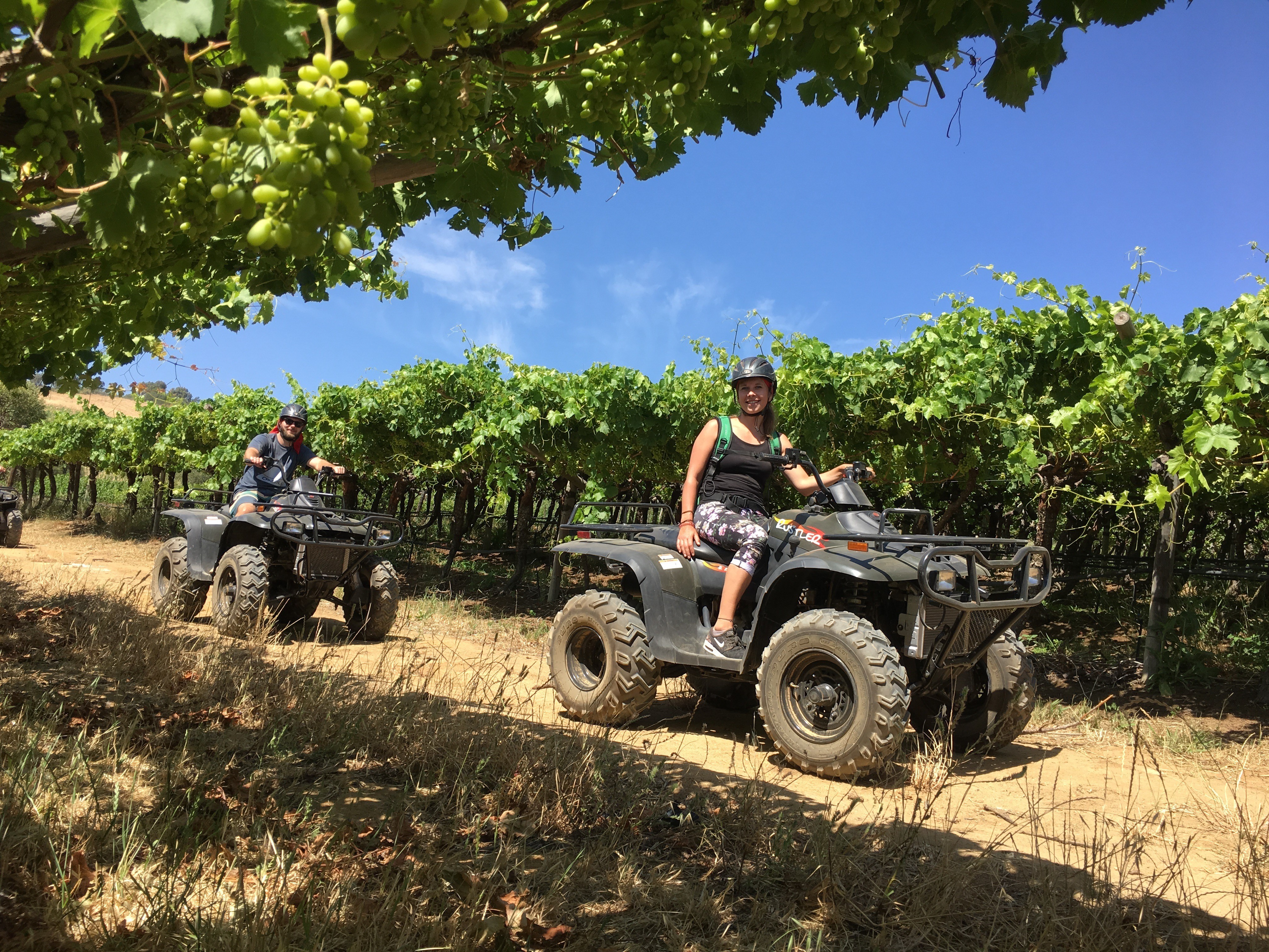 Wine Valley Adventures - Quad Biking