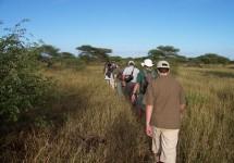 Kruger National Park - Backpacking Trails