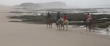 3 Sisters Horse Trails
