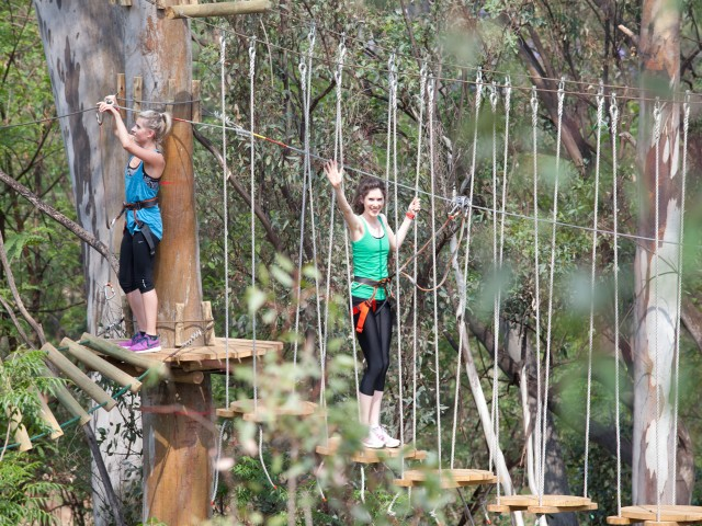 Acrobranch Adventure Park - Centurion