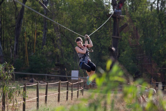 Acrobranch Adventure Park - Garden Route