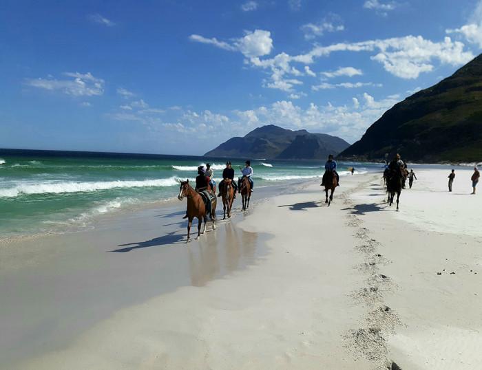 Beach Horse Rides - The Best Cape Town Adventures