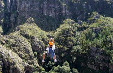 Cape Canopy Tours