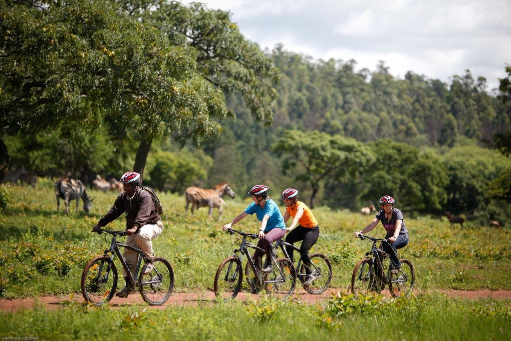 Chubeka Trails – Mountain Biking