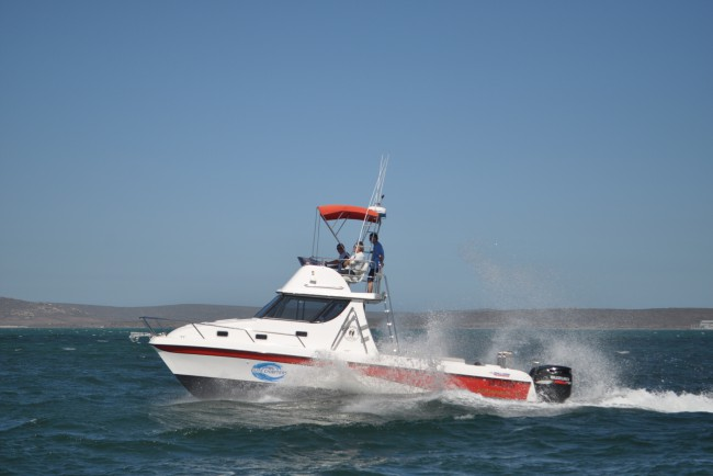 Elite Charters - Deep Sea Fishing