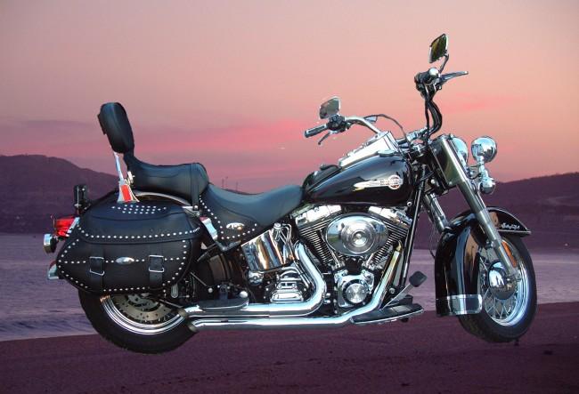 Cape Bike Travel - Harley Davidson Tours