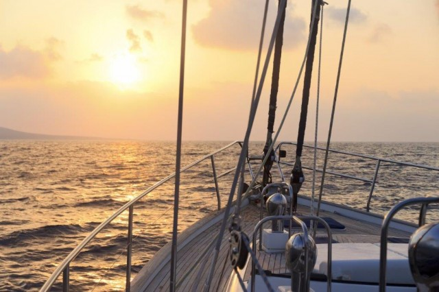 Ivanhoe Sea Safaris - Boat Trips