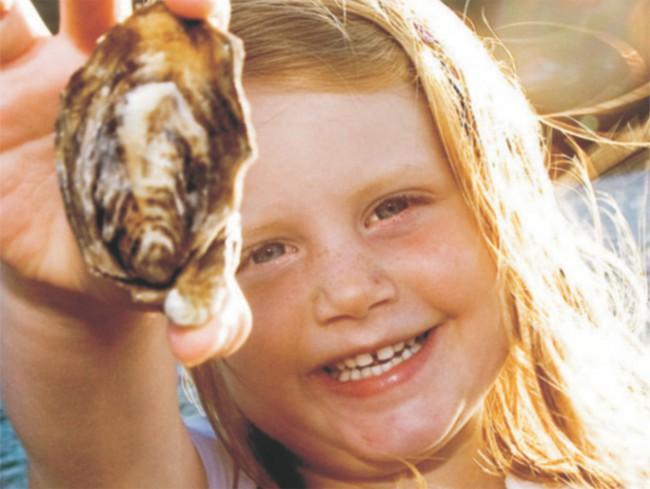 Knysna Charters - Lagoon Oyster Tour