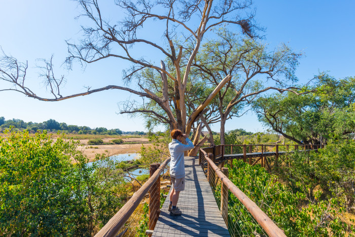 Kruger Backpacking Trail - The Best Adventure Holidays in South Africa