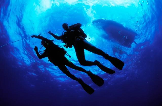 Pisces Divers - Scuba Diving