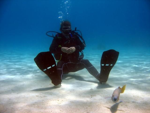 Pro Sport Diver