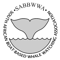 South African Boat Based Whale Watching Association (SABBWWA)