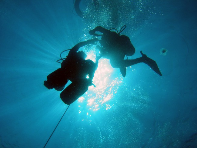 Calypso Dive & Adventures JHB