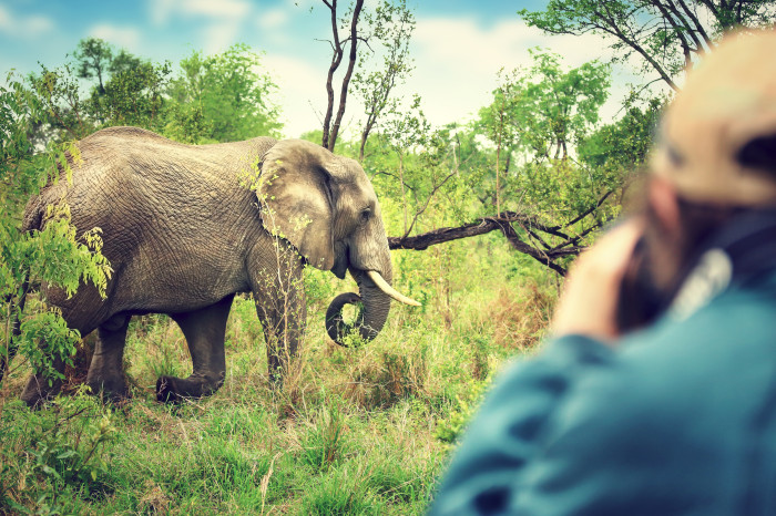 Tailor-made Safaris - The Best Adventure Holidays in South Africa