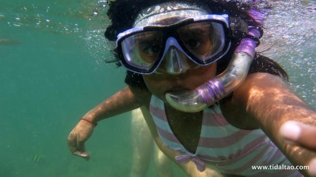 Tidal Tao Snorkeling
