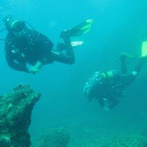 Adventure's Edge Dive Centre - Scuba Diving