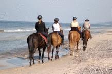 Beach Horse Riding1