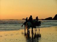 Beach Horse Riding2