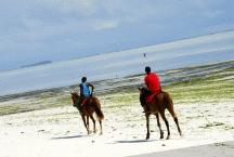 Beach Horse Riding3