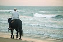 Beach Horse Riding5
