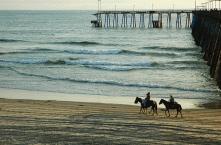 Beach Horse Riding8