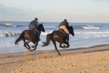 Beach Horse Riding9