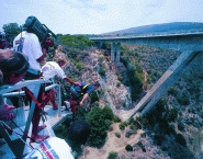 Bungee Jumping5
