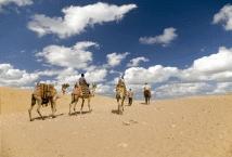 Camel Riding5