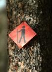 Hiking8