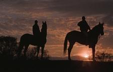Horse Riding5