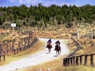 Horse Riding6