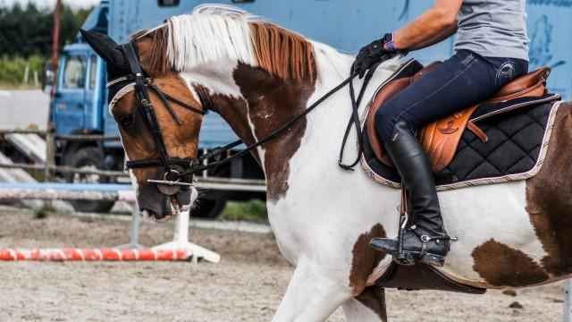 Bokpoort Horseback Adventures