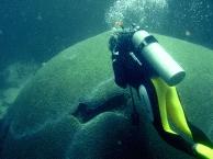 Scuba Diving1