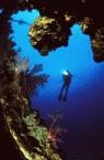 Scuba Diving5