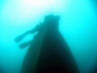 Scuba Diving9