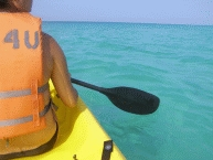 Sea Kayaking2